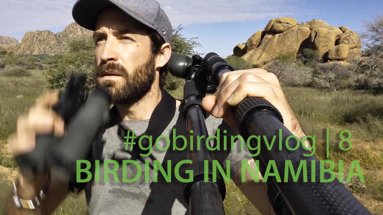 Neue Episode: #gobirdingvlog8