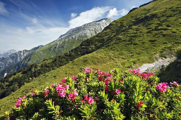 Parco delle Preralpi Giulia (Resia e Chiusaforte)