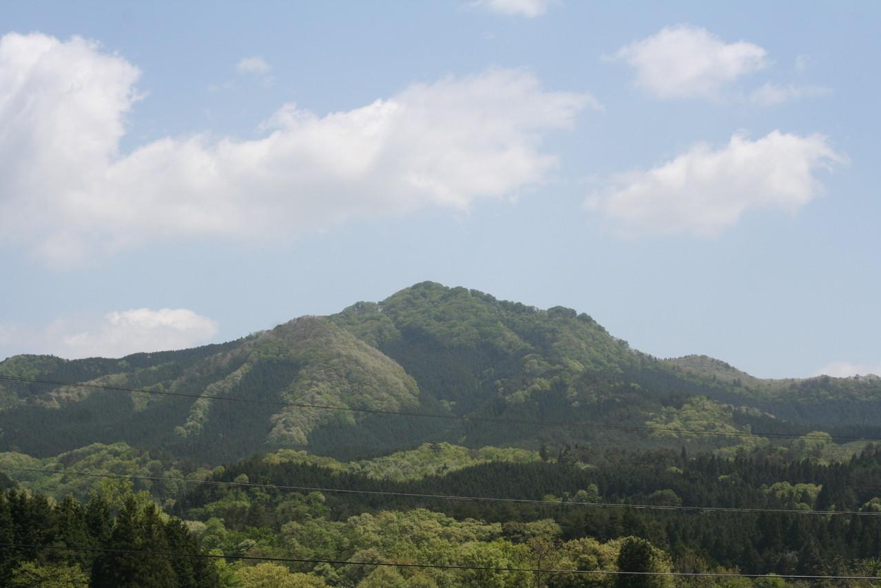 女亀山 833メートル ブナの原生林