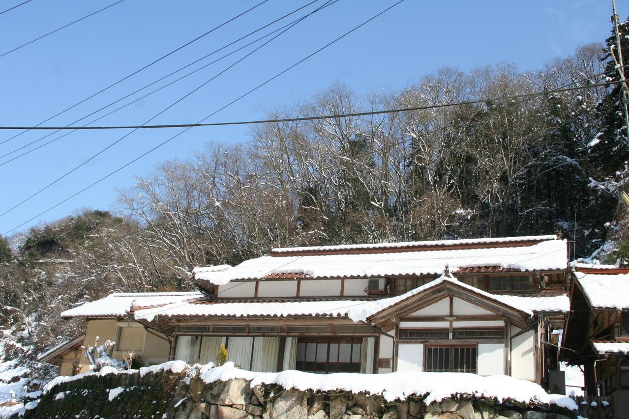 25年の正月は雪です