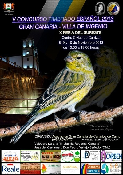 Cartel anunciador Concurso Agracanto 2013.