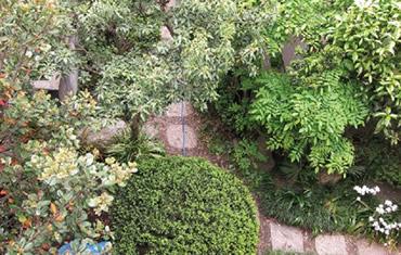 建物と同じく手入れをされ時を重ねた庭 四季の花々がバランスよく配置されている