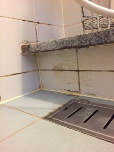 湿気の籠りがちな浴室は清潔に保つため、こまめに清掃して換気をしましょう