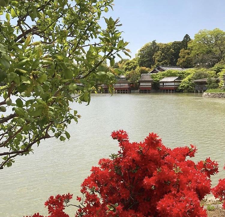 京都市下京区の心療内科、女医のいるメンタルクリニック、川辺のつつじ