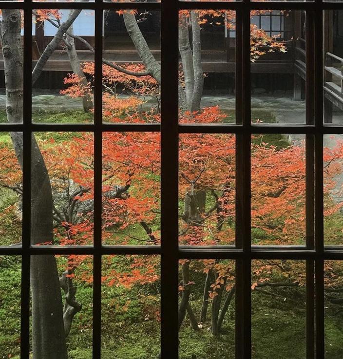 京都市下京区の心療内科、メンタルクリニック、秋の紅葉、建仁寺