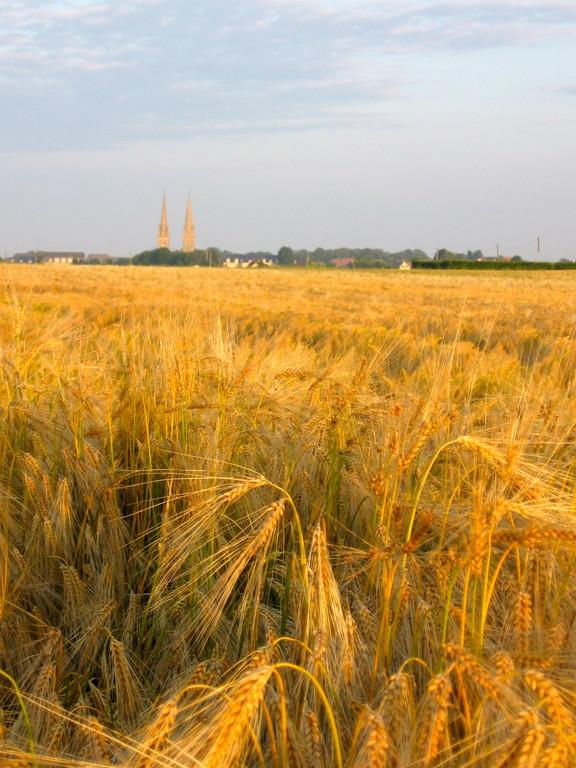 la plaine de Caen