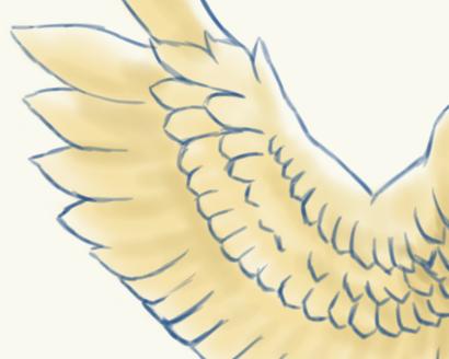 翼を描く練習 イラスト系個人サイト紫野屋