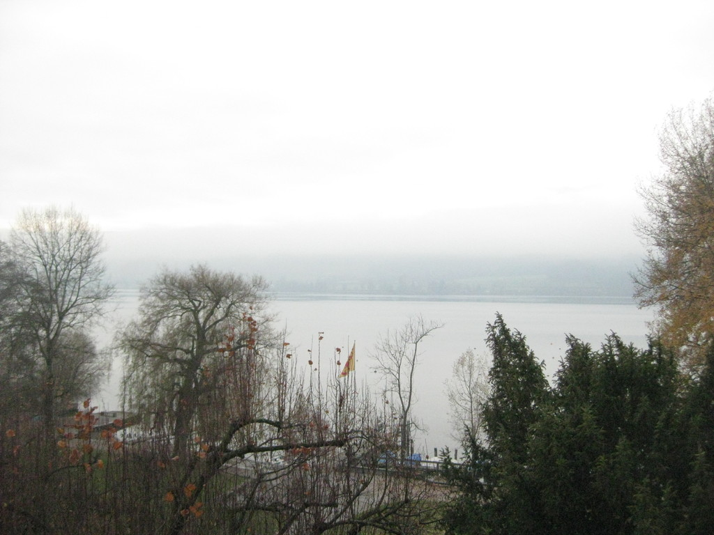 Trotz trister Aussicht auf den nebelbedeckten Greifensee, konnten wir schöne Stunden geniessen und freuen uns auf ein nächstes Zusammenkommen.