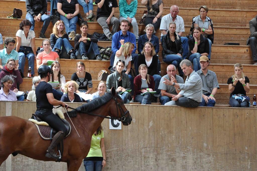 Riese Coriall und sein Reiter Jurij hören ganz genau zu...