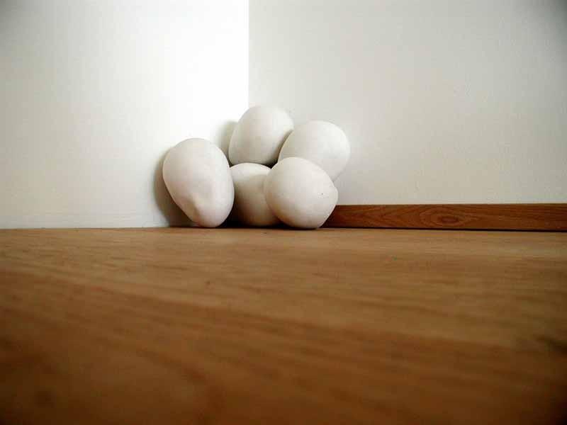 Fünf Eier STANISLAVA KONVALINKOVA