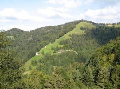 Sicht vom Wegweiser / Haus links im Bild