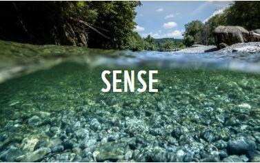 Glasklar - die Preisgekrönten (Bildursprung WWF)