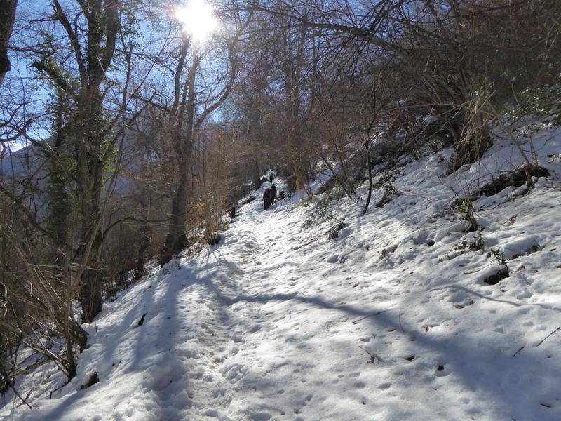 et dans la neige, c'est le silence !