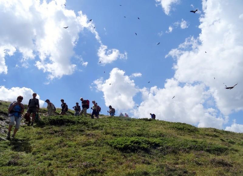 Les vautours nous survolent alors qu'on quitte le lieu