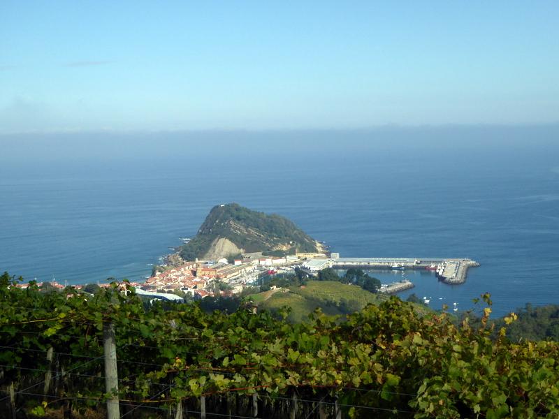 est un vin blanc produit à partir de raisins verts