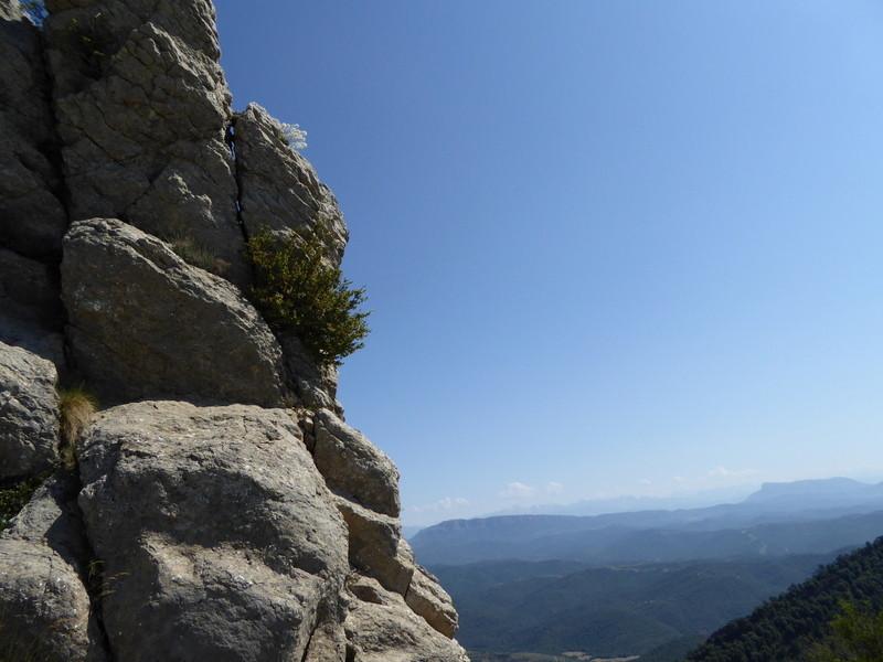 Au fond la peña de Oruel, à gauche sur la roche, un saxifrage...