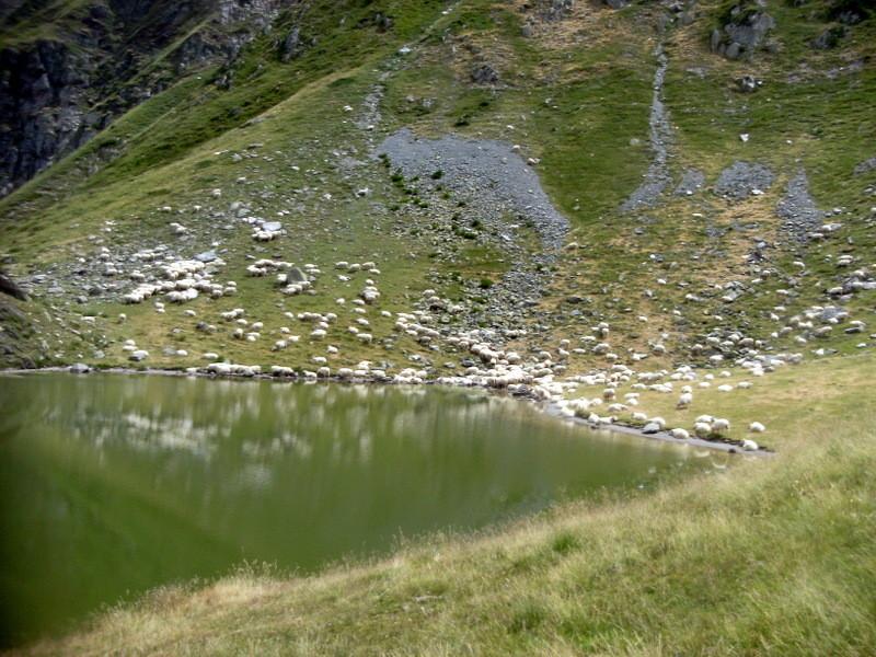 Puits d'Arious 1867 m, petit lac peu connu