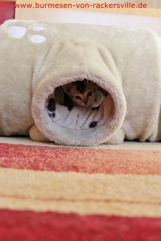 Enola spielt im Tunnel