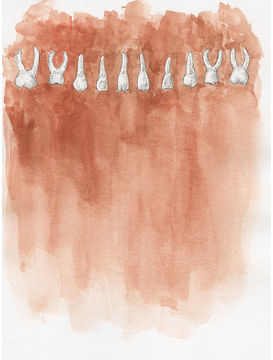 Zähne,  Aquarell auf Papier, 13,9 x 21,6cm, 2016