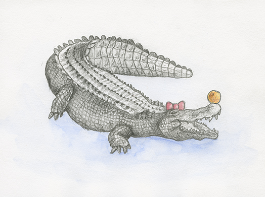 Alligator, Aquarell auf Papier, 21,6 x 13,9cm, 2017
