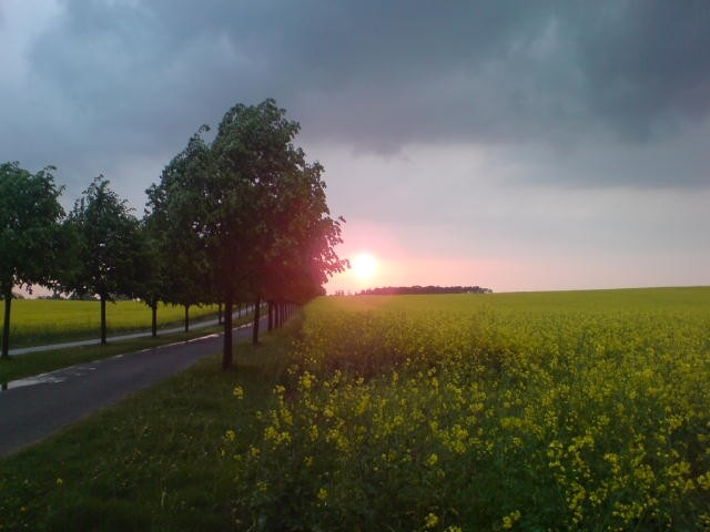 Weg zum Plauer See von Alt-Schwerin aus