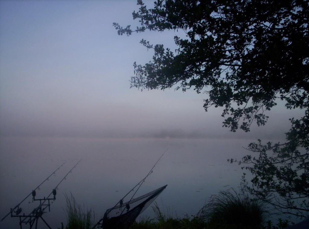 Nebel übern Wasser