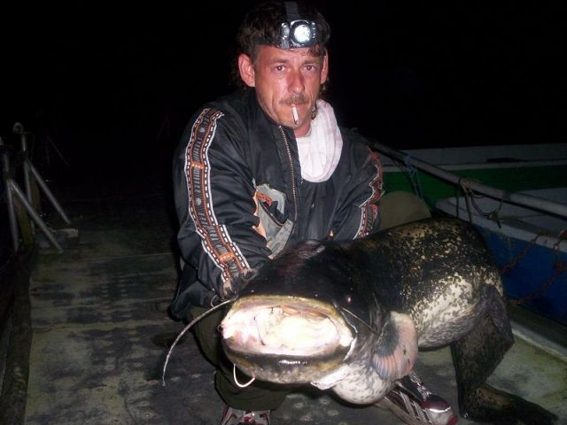 Waller 25kg tauchower See