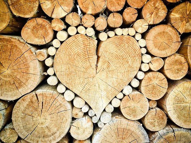 Nachhaltigkeit im Holzbau