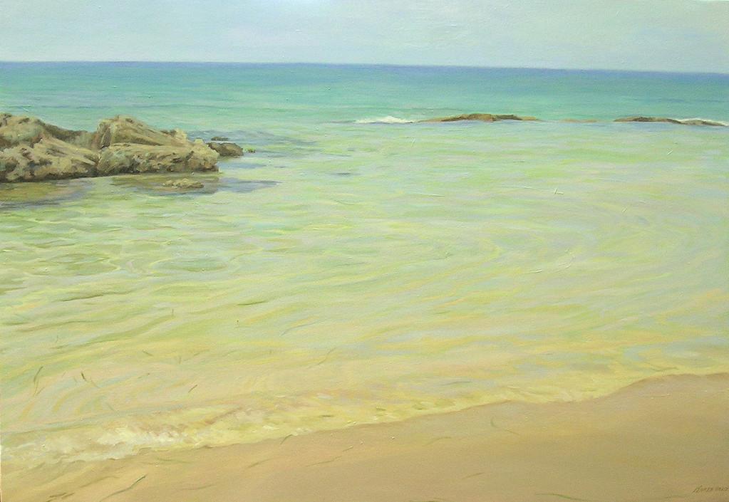 Rocas en la playa. *