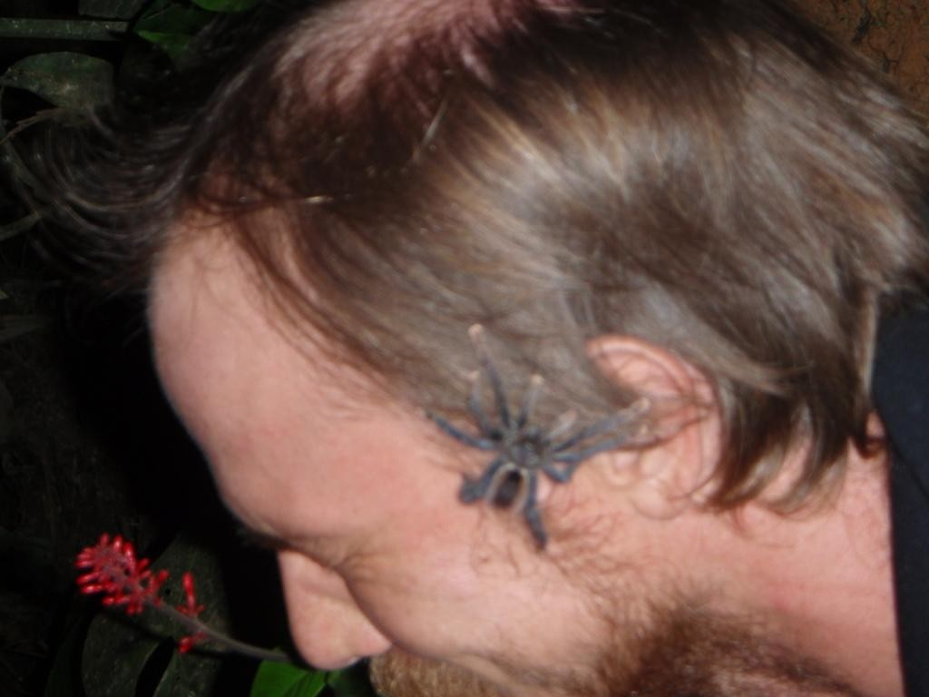 Steph auf Tuchfühlung mit  der Tarantula!!!