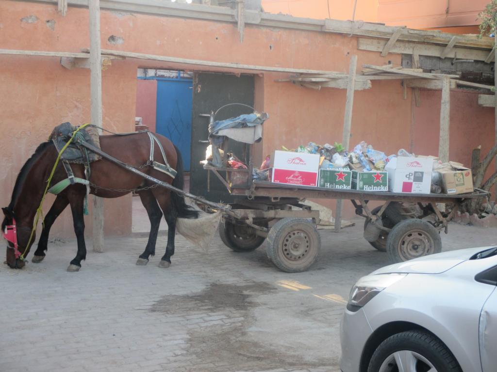 Müllabfuhr....