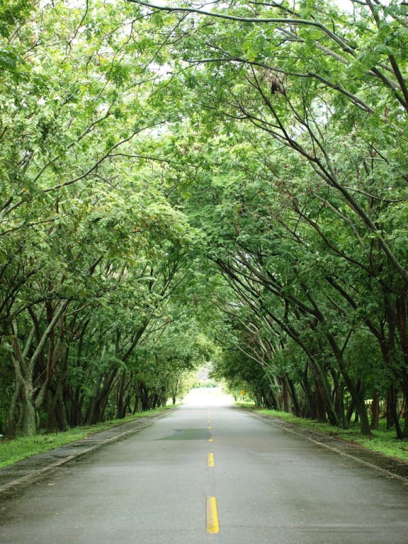 auf dem Weg zu Jans Finca in La Plata