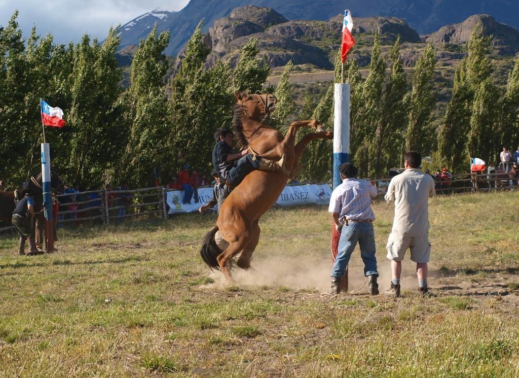 Rodeo reiten will gelernt sein