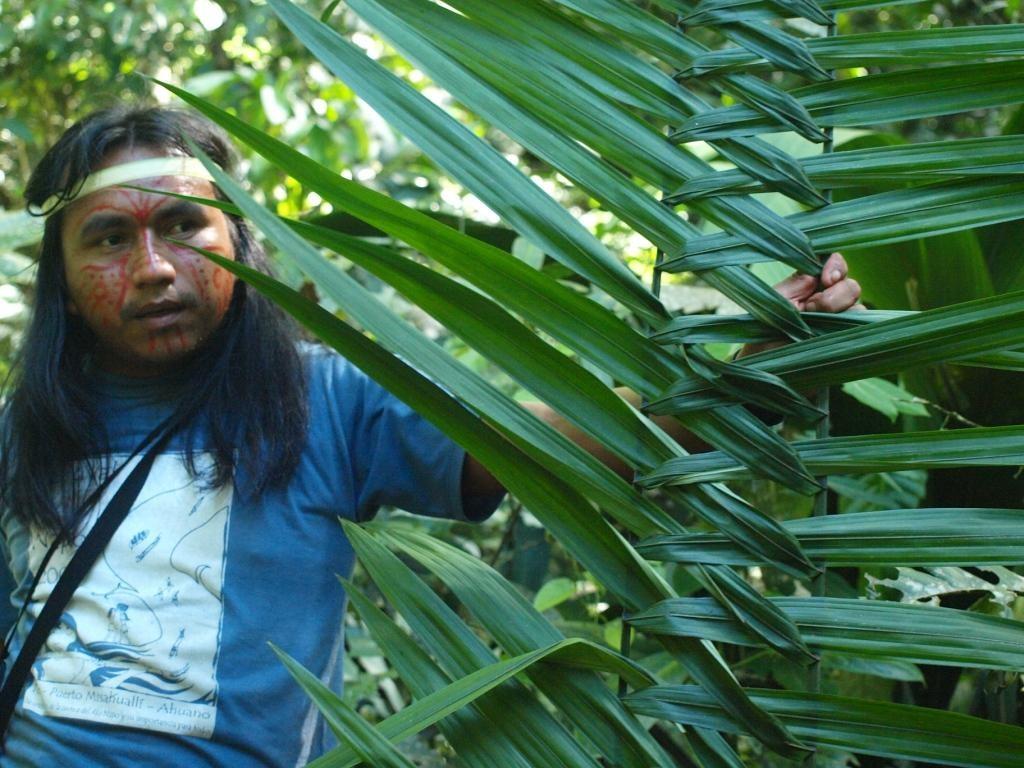 Teo unser Guide bastelt uns ein Feldbett aus Palmblättern