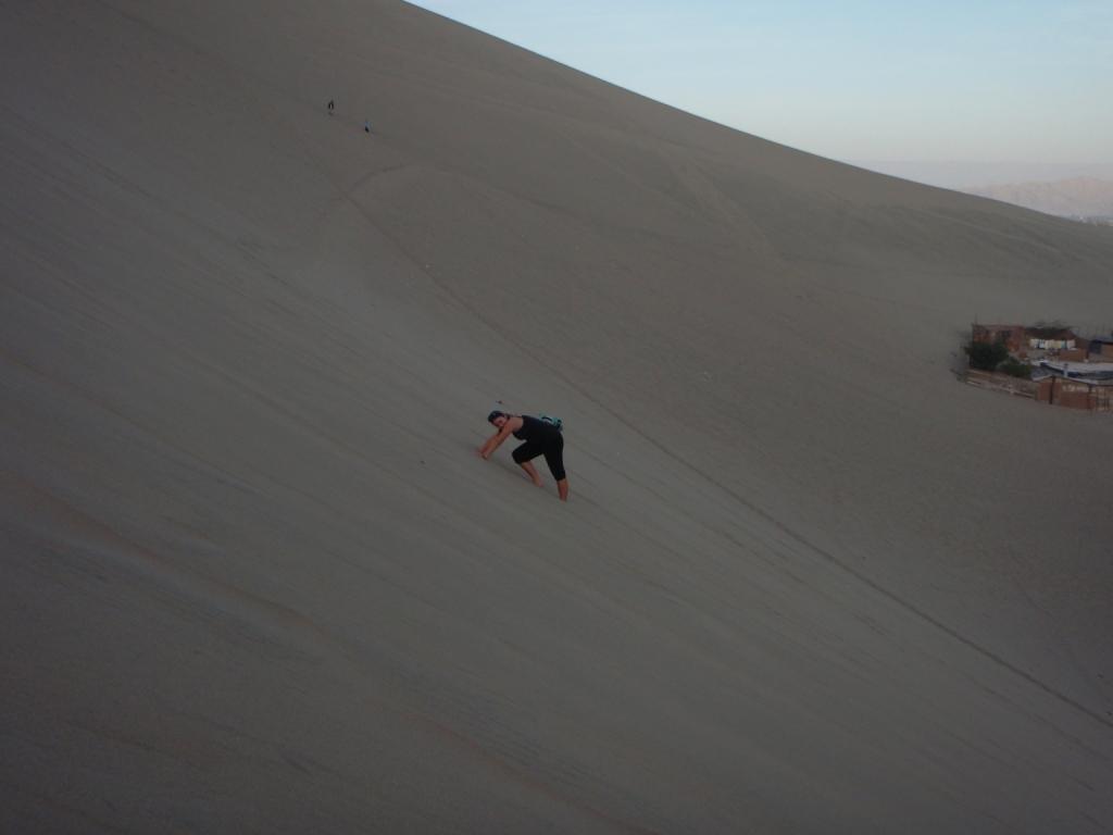 bestiegen aber danach die hohen Dünen