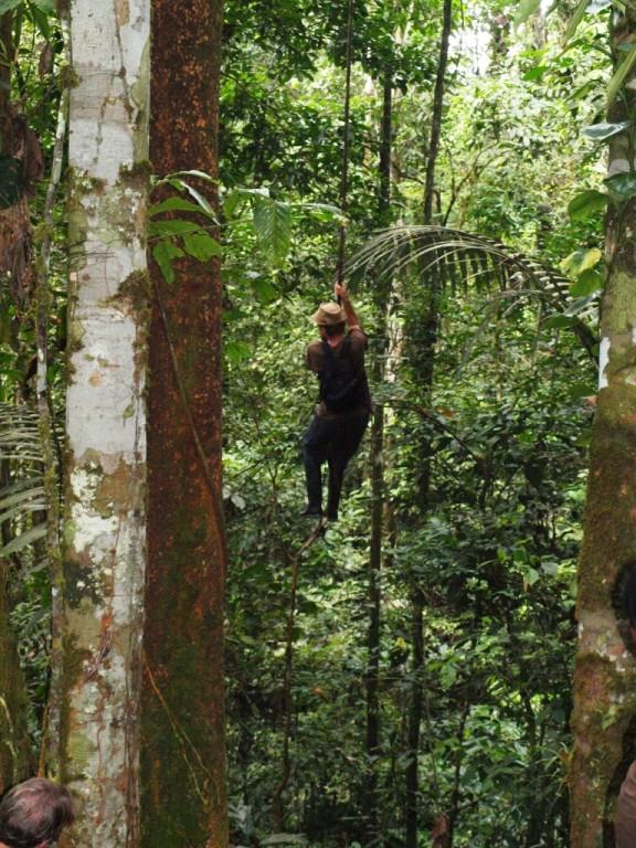 Tarzan schwingt durch die Lüfte, ich hätt zugern noch den Lendenschurz an ihm gesehen :-)