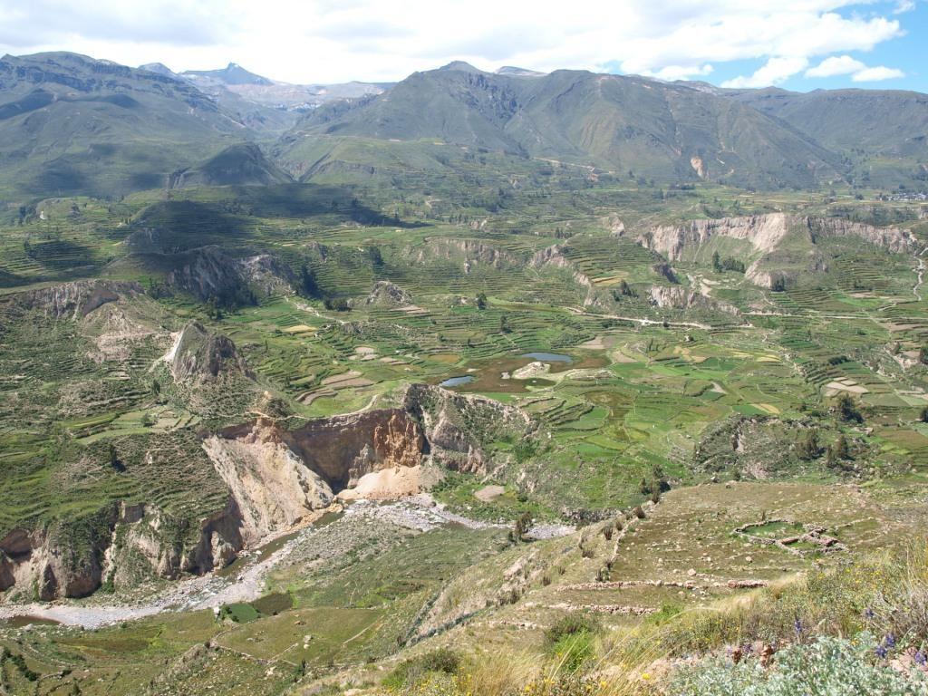 Aussicht in Colca Tal