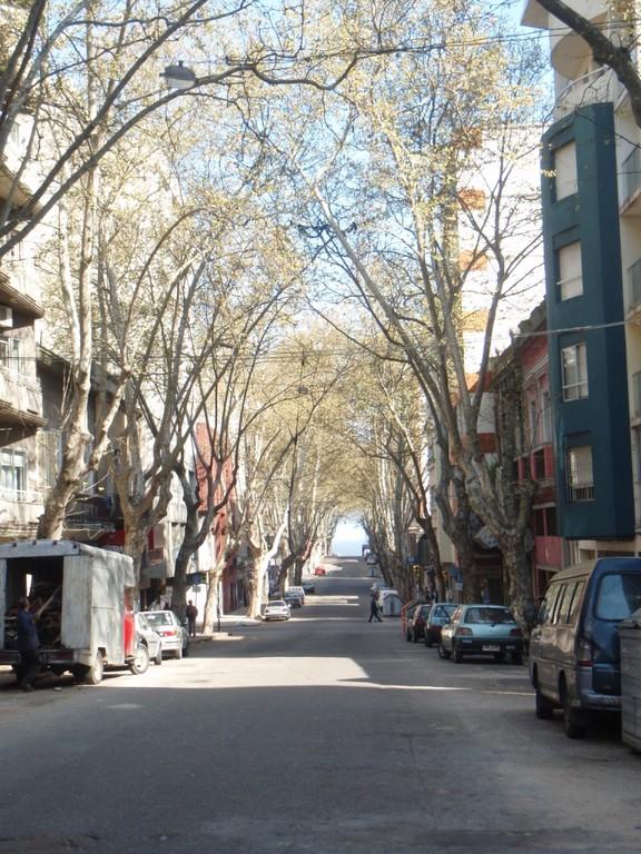 die Altstadt Montevideos gefällt uns auf Anhieb