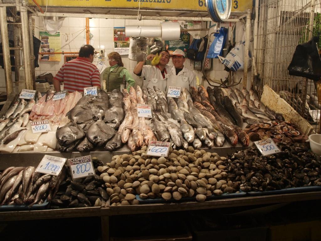 Markthalle in Santiago. Hier der Frischfischstand...