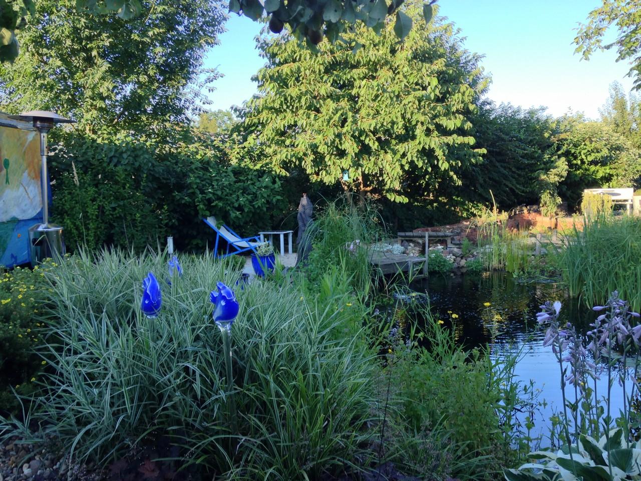 Garten Janssen garten janssen garten janssen horst janssen museum foto andrey