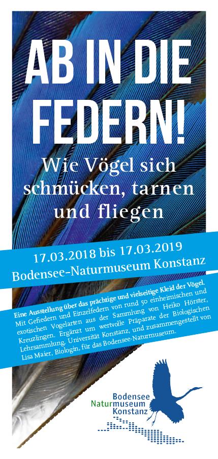 Ab In Die Federn Ausstellung Im Bodensee Naturmuseum Konstanz Ab