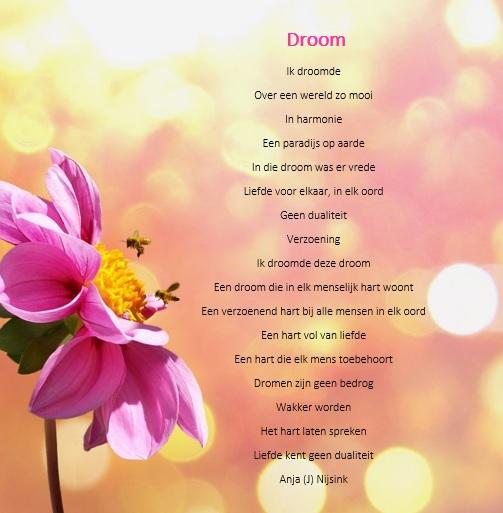 Citaten Over Dromen : Gedicht droom bijzondere gedichten en citaten