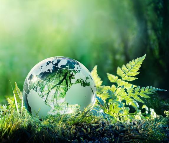 LIFE - Das Förderprogramm für Umwelt und Klimaschutz