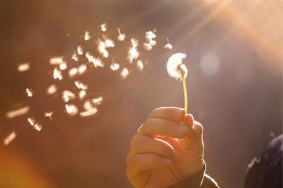 Dagmar Gollatz,  Bruxismus (Zähneknischen)     Grübeln     Reizdarm     Migräne und Spannungskopfschmerzen     Asthma     stressbedingte Magenschmerzen     Neurodermitis     Tinnitus     Stottern     Schlafstörungen Nichtraucher     Abnehm