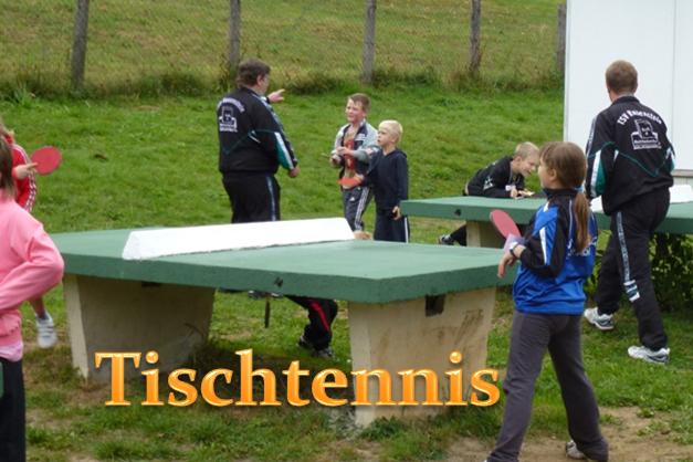 Partner: TSV Rauenstein, Abt. Tischtennis