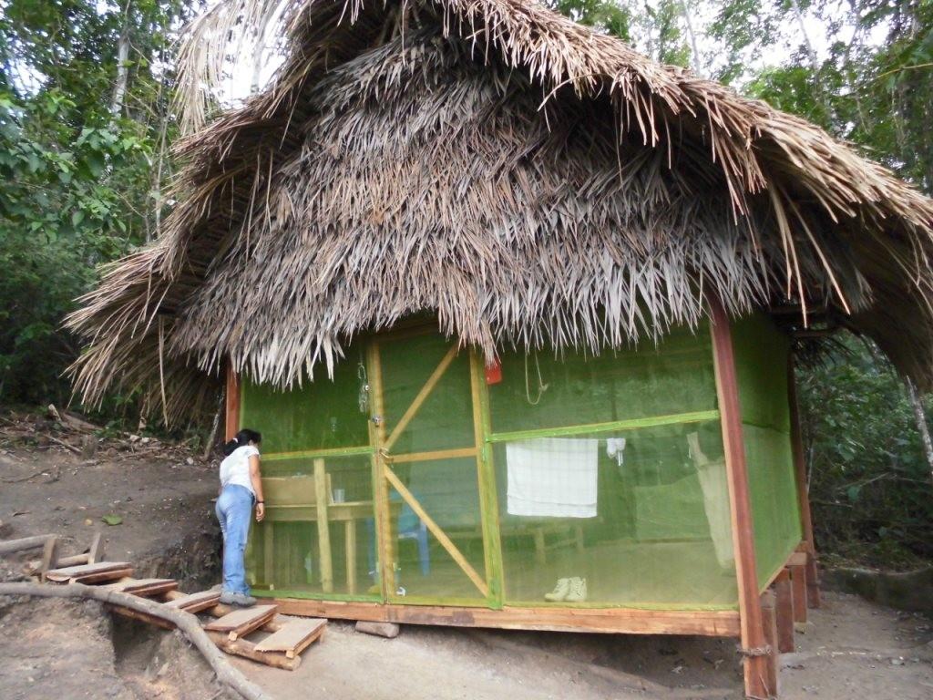 Tambo renovado