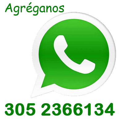 whatsApp de Ecocan paseo y adiestramiento de perros