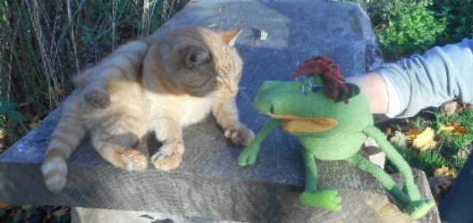 """""""miau, sach mal, hast Du irgendwo die Ratte gesehen?""""?"""""""