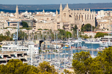 The Harbour and Palma Cathedral private city tour