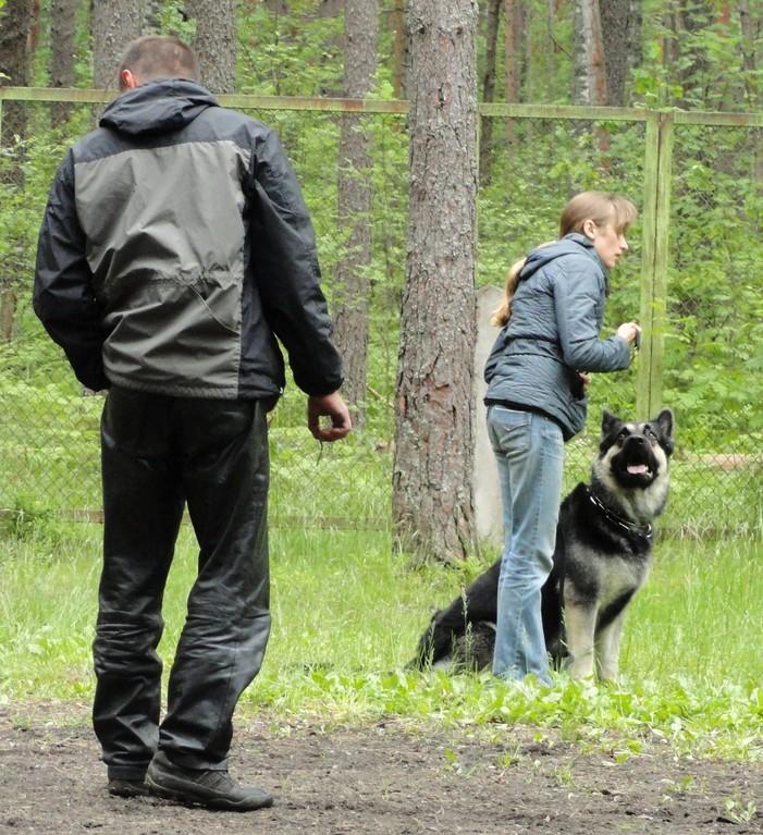 Юля и Ермак